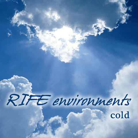 RIFE Environments: Cold