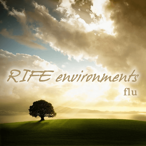 RIFE Environments: Flu