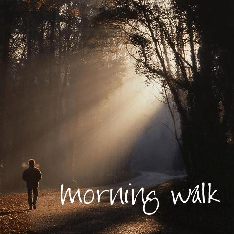 A Morning Walk